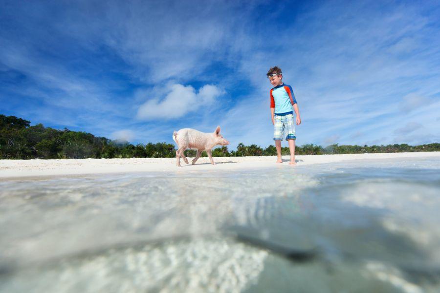 Багамские острова C6ANT Туристические достопримечательности