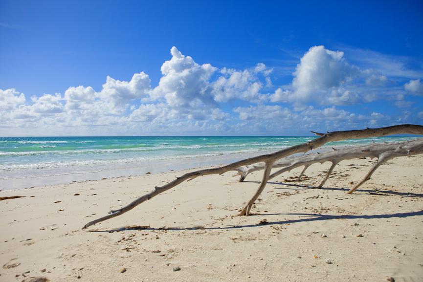 Bahamas C6ATF DX News