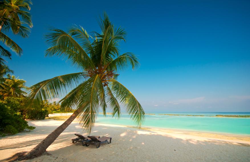 Bahamas C6AAS