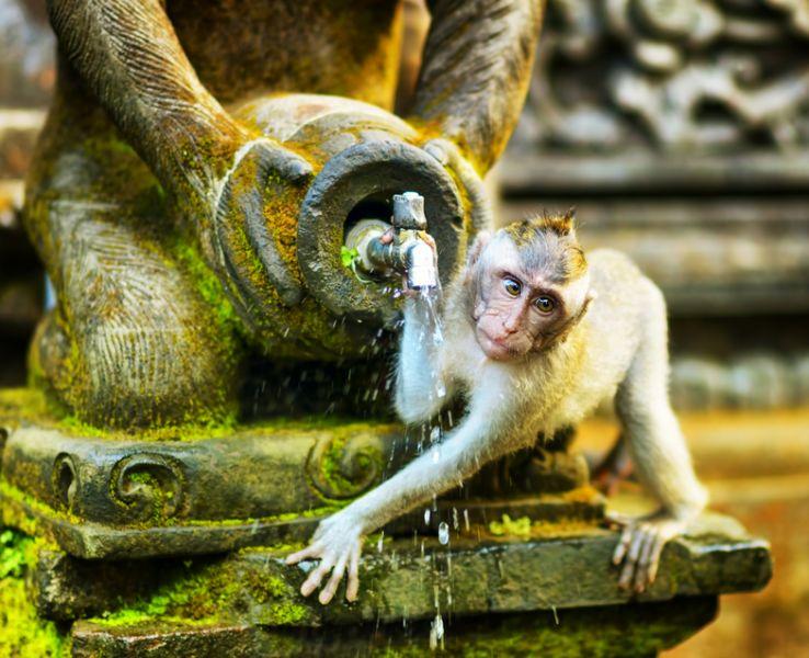 Bali Island YB9/AF1VL YB9/AB1PB YB9/KY1A Tourist attractions