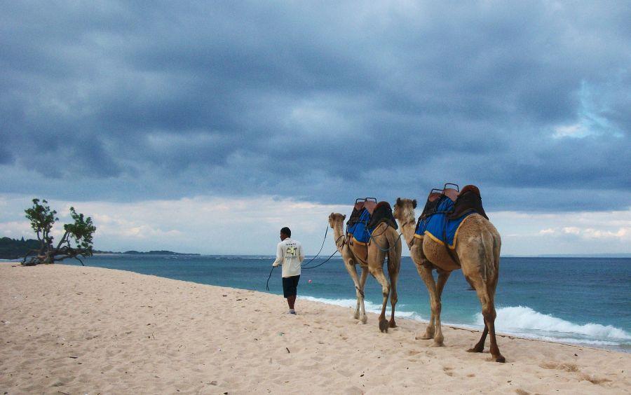 Bali Island YB9/DL5CO DX News
