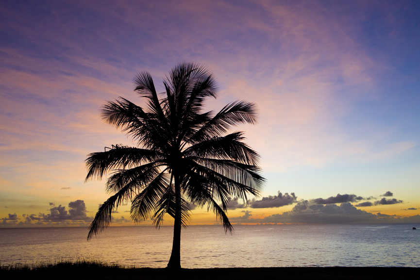 Barbados 8P9EE DX News