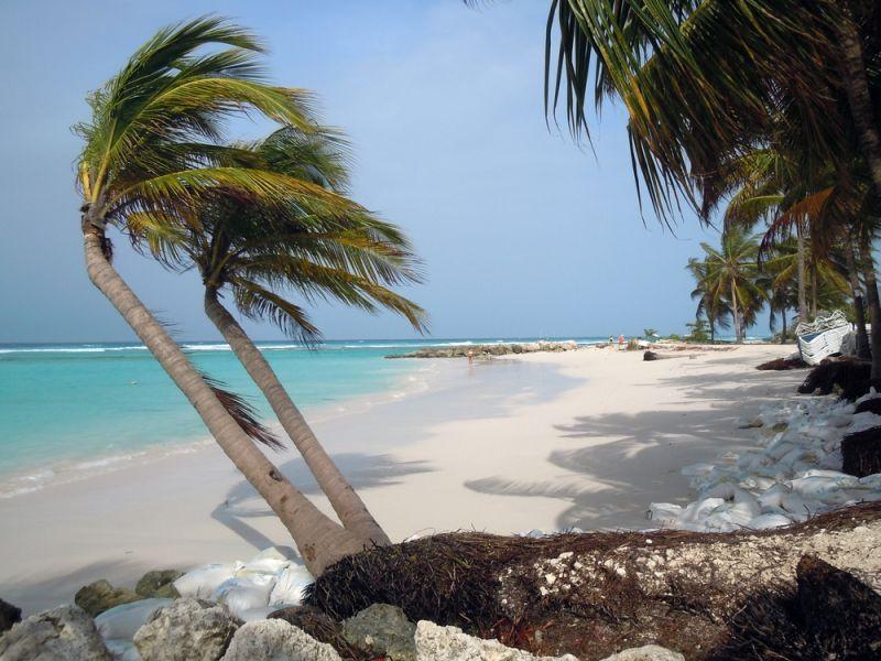 Барбадос 8P9EZ Туристические достопримечательности Пальмы пляж