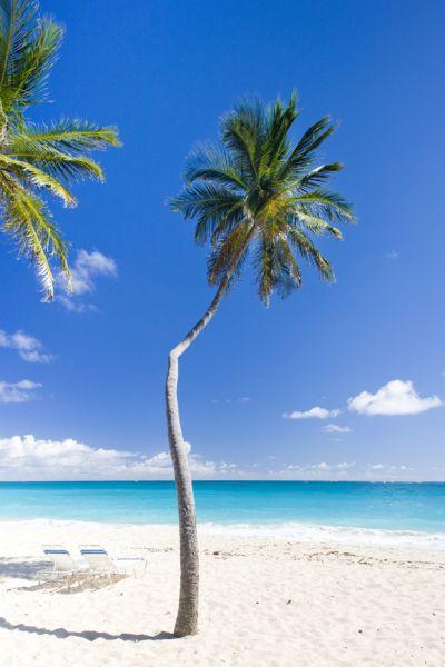 Barbados 8P9MC Tourist Attractions Bottom Bay, Barbados Caribbean