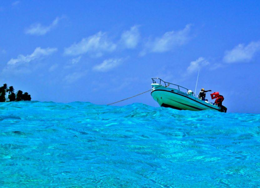 Belize V31VP Snorkeling