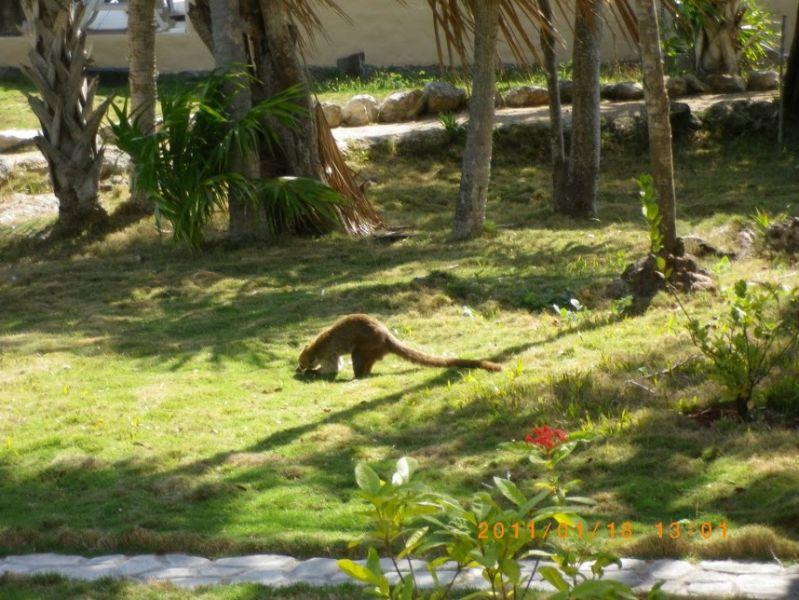 Belize V31YN V31GW Tourist attractions
