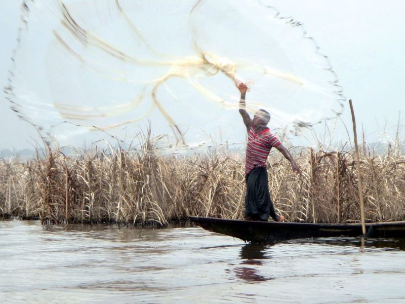 Benin TY1AI A fisherman tosses in his net into Lake Nokoue.