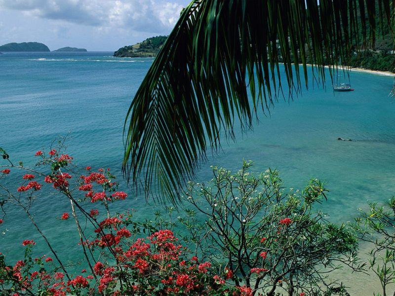 Bequia Island Grenadine Islands J8/WW2DX Friendship Bay.