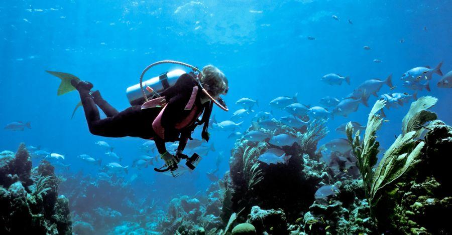 Бермудские острова K2SE/VP9 Туристические достопримечательности Дайвинг