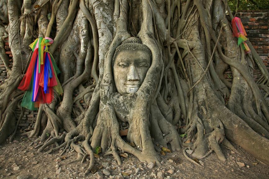Cambodia XU7AFA