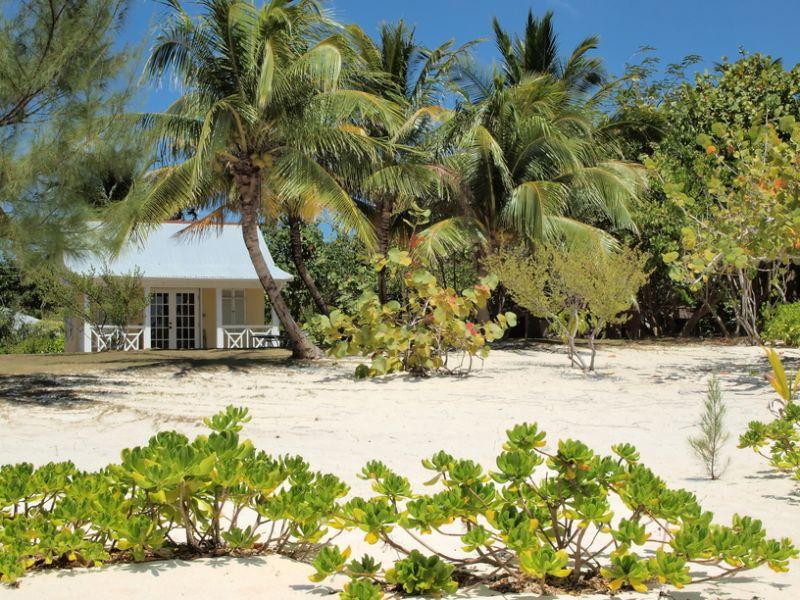 Cayman Islands ZF2ZL DX News