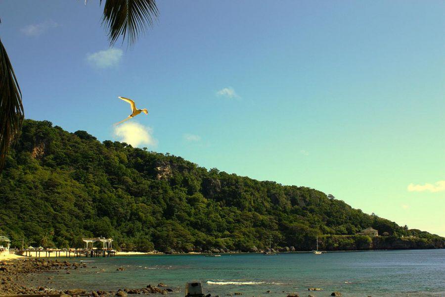 Остров Рождества VK9X/JA0JHQ JA0JHQ/VK9X Австралия Туристические достопримечательности