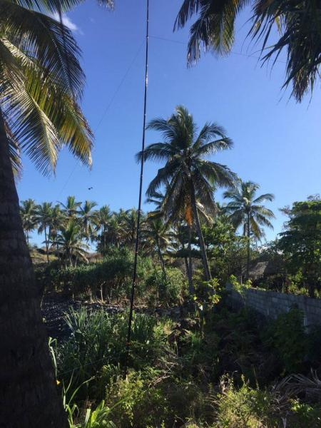 Comoro Islands D66D 80m antenna