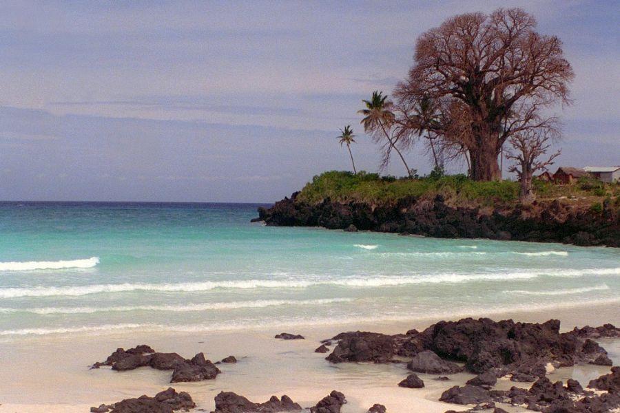 Comoro Islands D66D Baobab, Beach.
