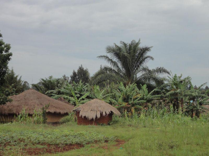 Демократическая Республика Конго 9Q6BB Ару.