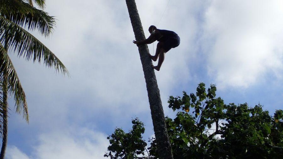 Cook Islands E51DWC 160m antenna
