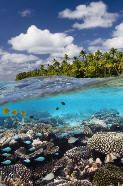 Cook Islands E51DWC Tourist attractions