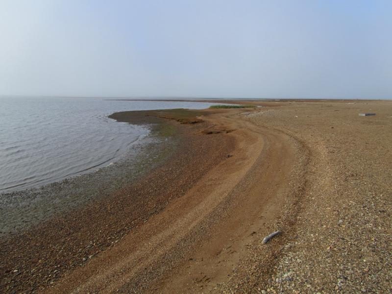 Cooper Island VE3LYC/KL7 Island shoreline close to the camp site.