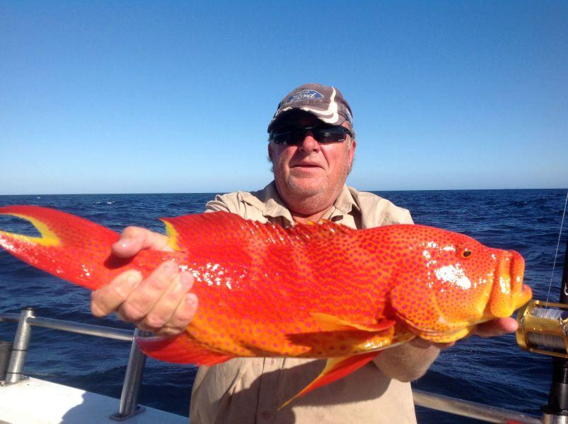 Остров Крокер Рыбалка Рыба