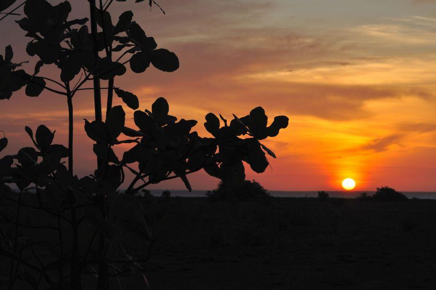 Остров Крокер Порадовал прощальный закат