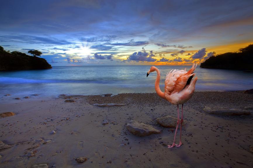 Curacao PJ2/KG2A