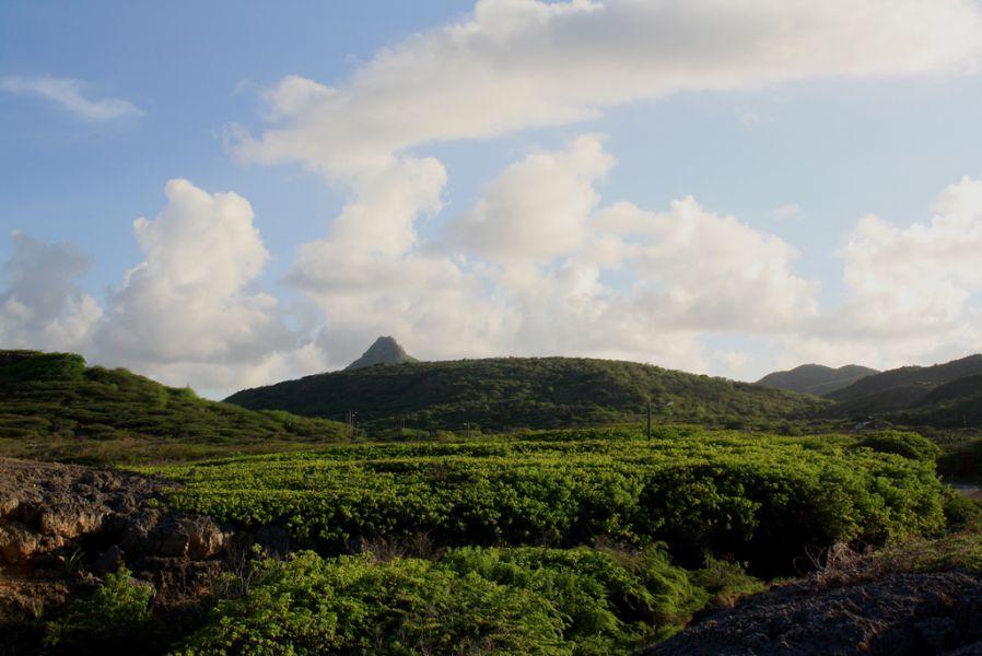 Curacao Island PJ2/PA3HGT
