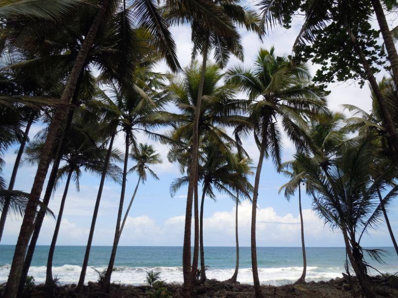 Остров Доминика J79CR