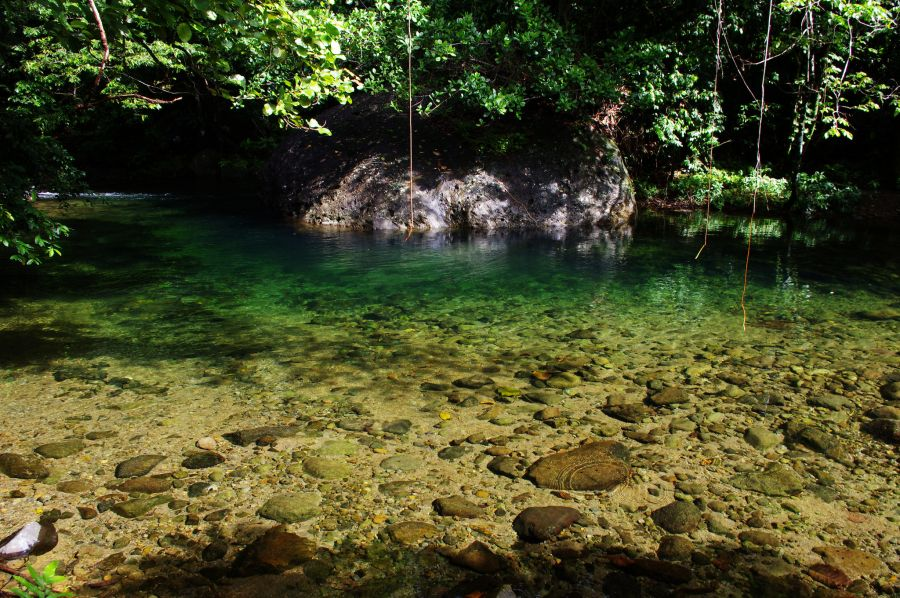 Dominica Island J79E DX News Pure water.