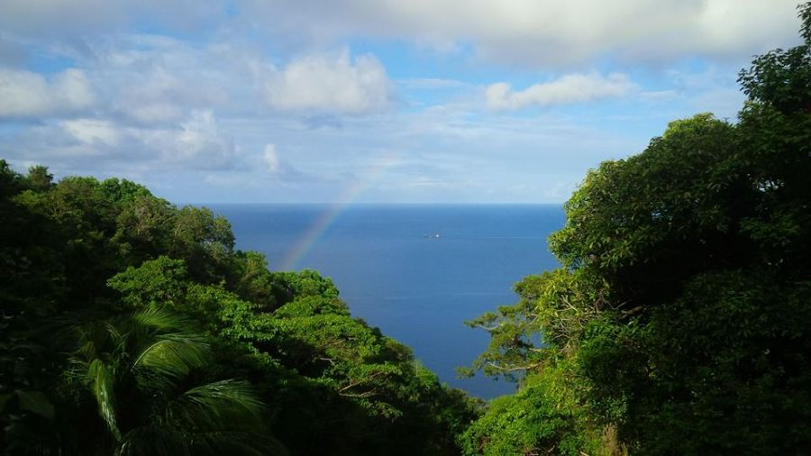 Dominica Island J79BH DX News