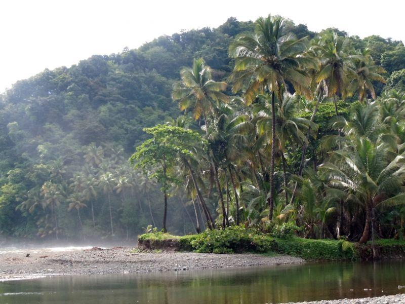 Dominica Island J79L