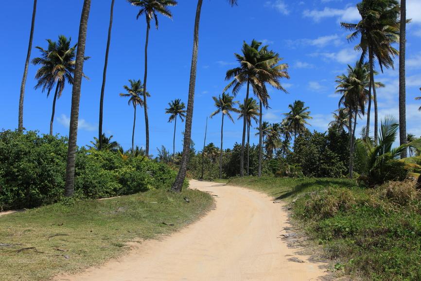 Остров Доминика J79X