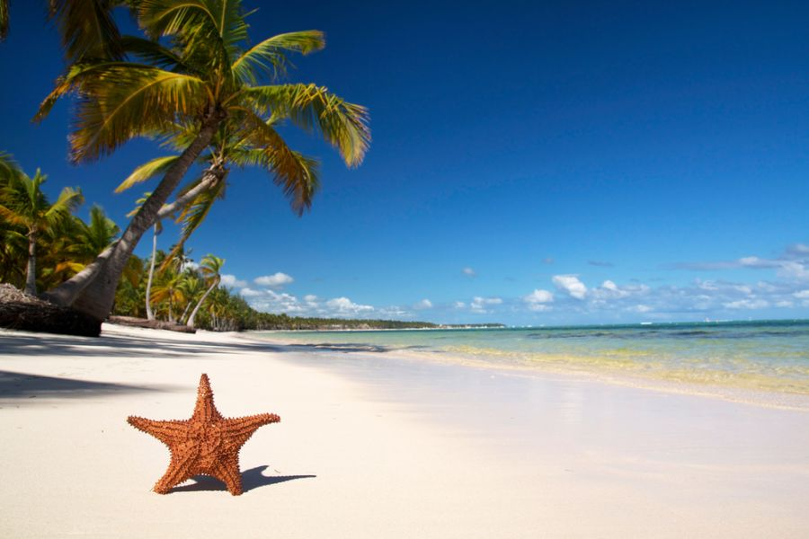 Dominican Republic HI3W Tourist attractions spot Starfish