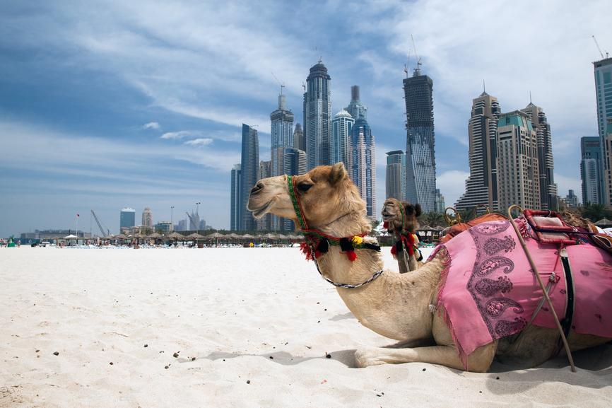 Dubai A6/M0DXR