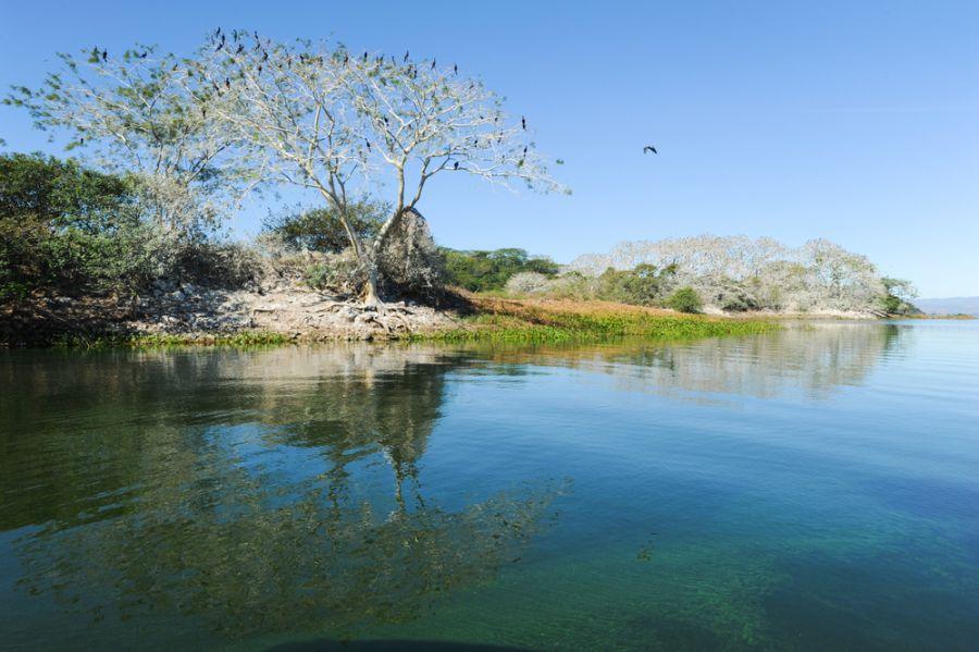 El Salvador YS90IARU DX News Bird island on the lake of Suchitlan.