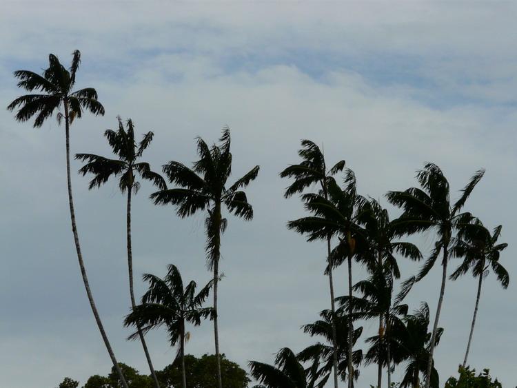 Enggano Island YF1AR/4 DX News
