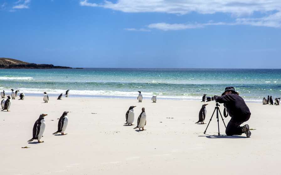 Falkland Islands VP8DBR DX News