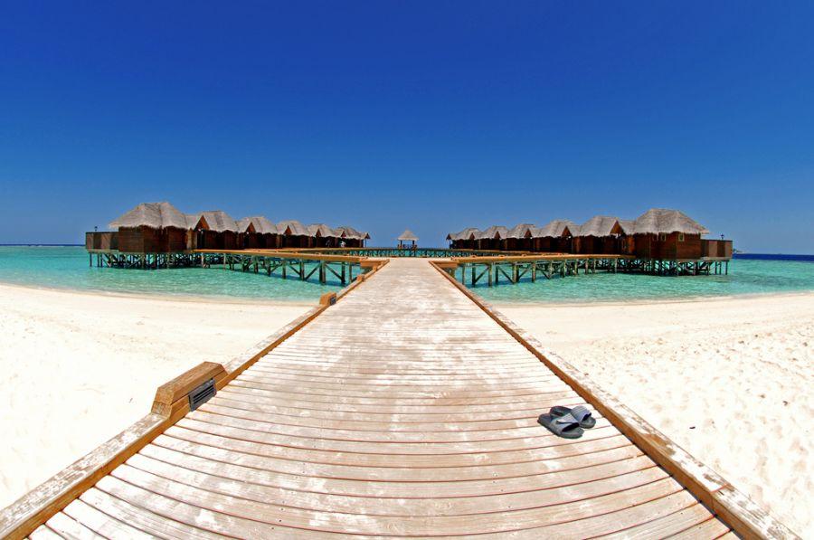 Fihalhohi Island 8Q7DX Atoll Male Maldives DX News