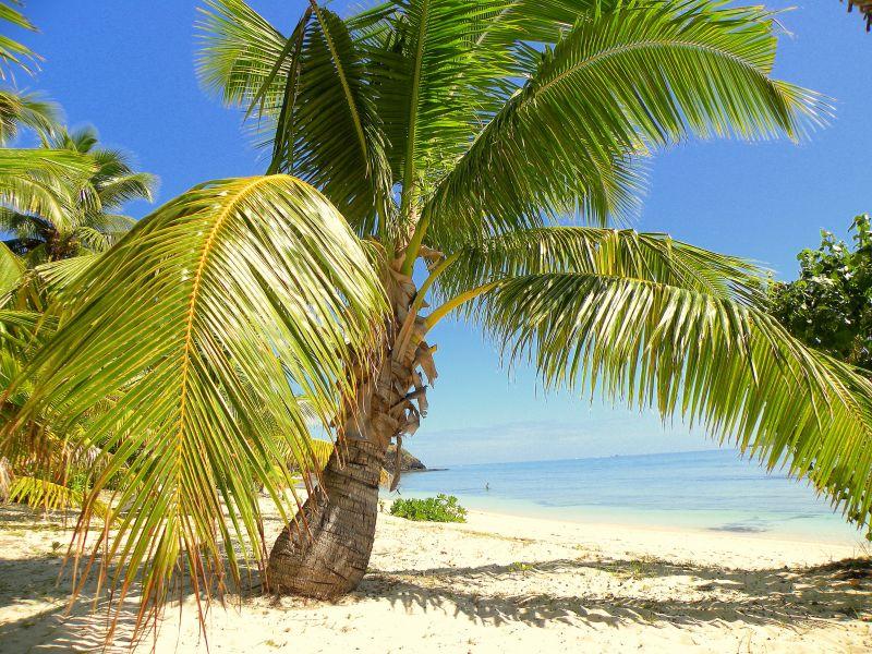 Остров Тавеуни Фиджи 3D2AC 3D2CO 3D2LJ 3D2TR Туристические достопримечательности