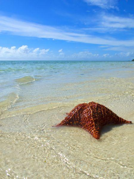 Остров Гранд Багама C6AGM Туристические достопримечательности