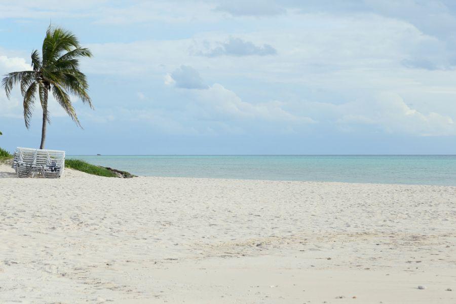 Остров Большой Багама C6ASL DX Новости