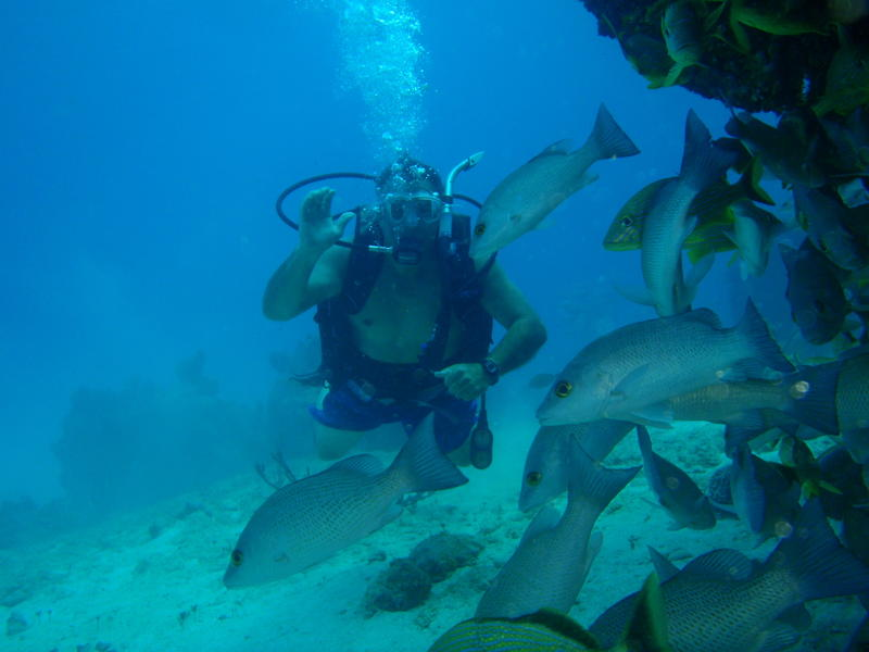 Grand Bahama Island C6ASL