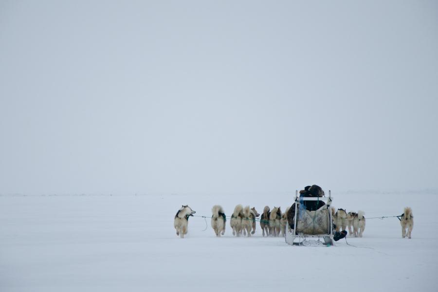 Гренландия OX/OZ1LXJ Вестгронланд