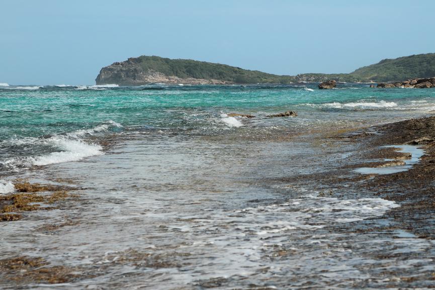 Guadeloupe Island FG/G4SGX