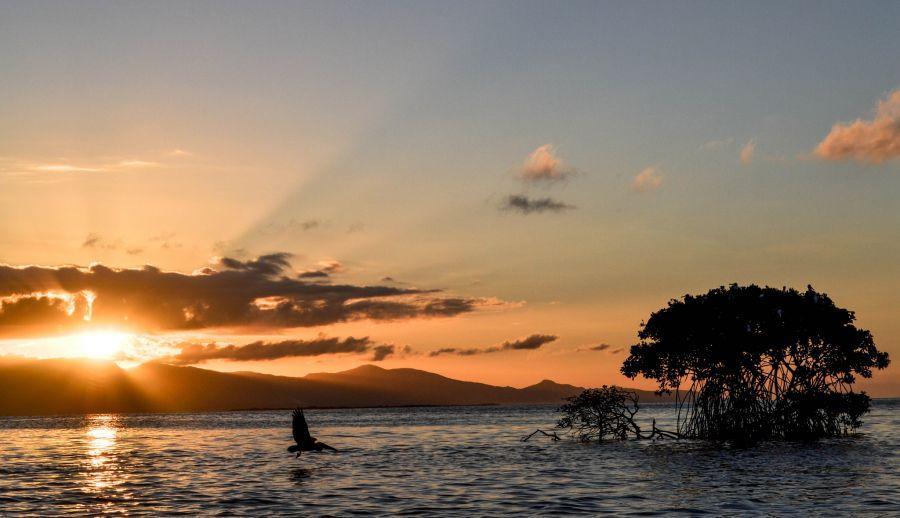 Guadeloupe FG4KH DX News Sunset.