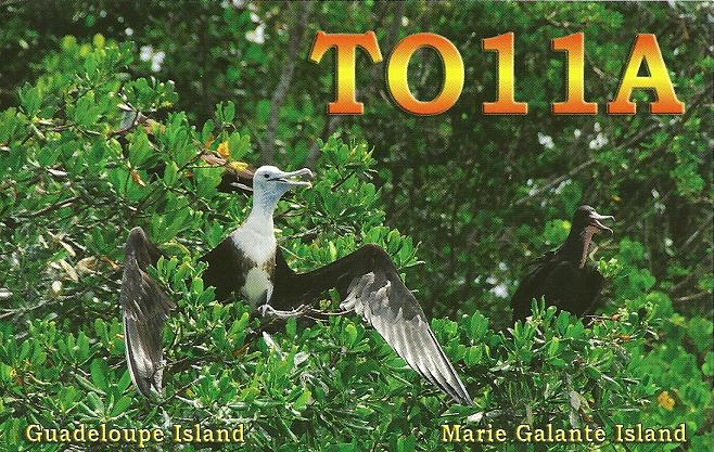 Остров Гваделупа TO11A QSL