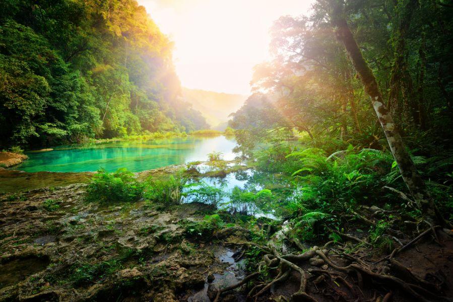 Гватемала TG5/W8ERI Национальный парк Семук Чампей.