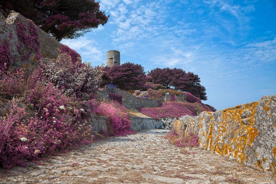 Guernsey Bay GU0URR DX News
