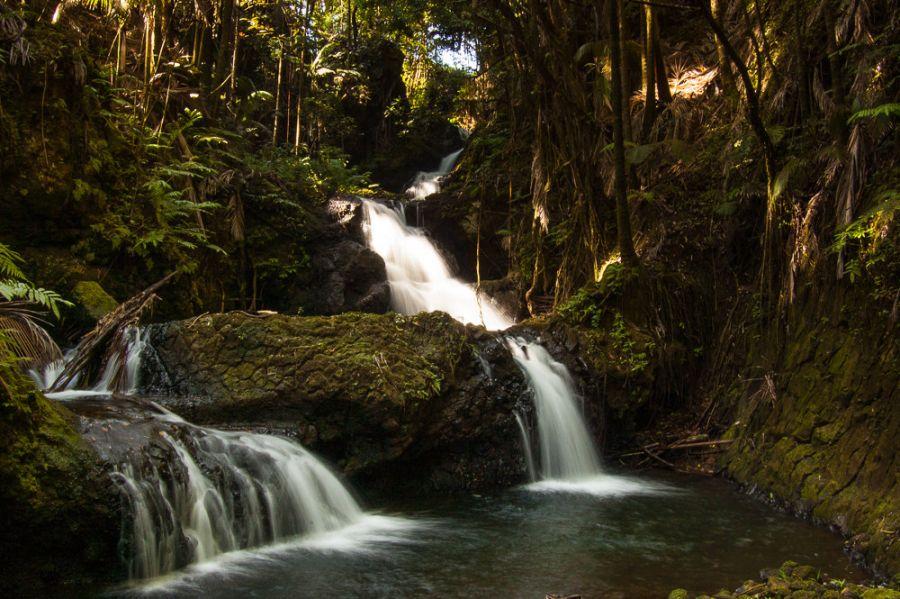 Hawaiian Islands KH6FX KH7SD Waterfall, Onomea Bay, Big Island.
