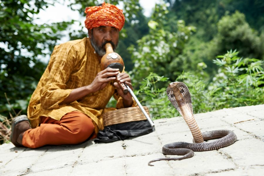 India AU90IARU Tourist attractions spot Indian Snake charmer.