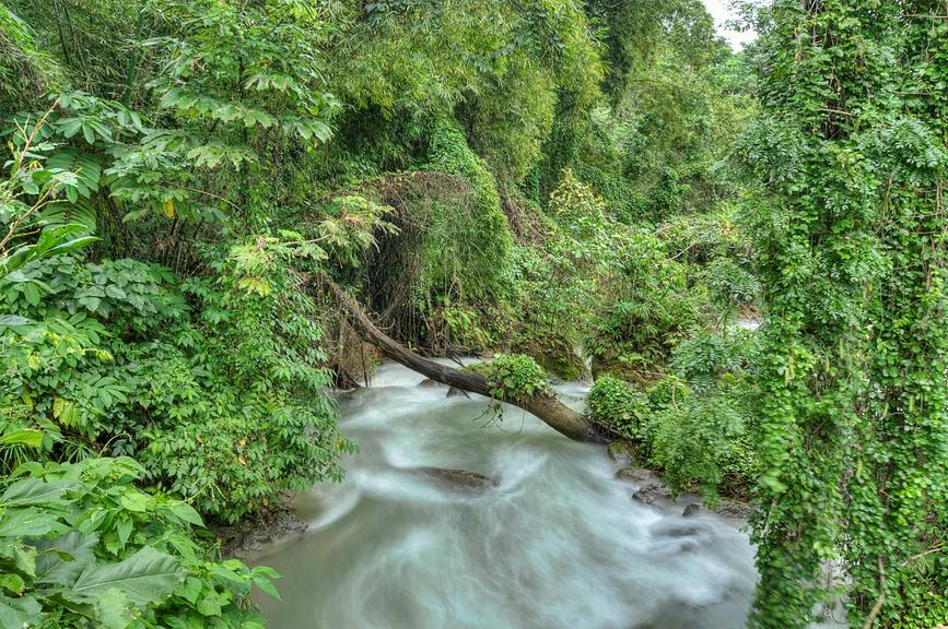 Ямайка 6Y4K Быстрая река